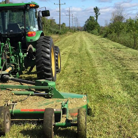 Mowing in the Right of Way